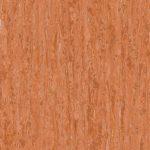 optima-red-orange-0258