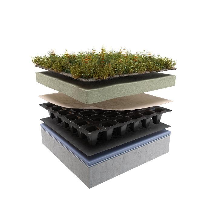dach-zielony-ekstensywny02